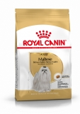 Royal Canin Malteser Adult